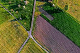 Rodzaje nieruchomości rolnych