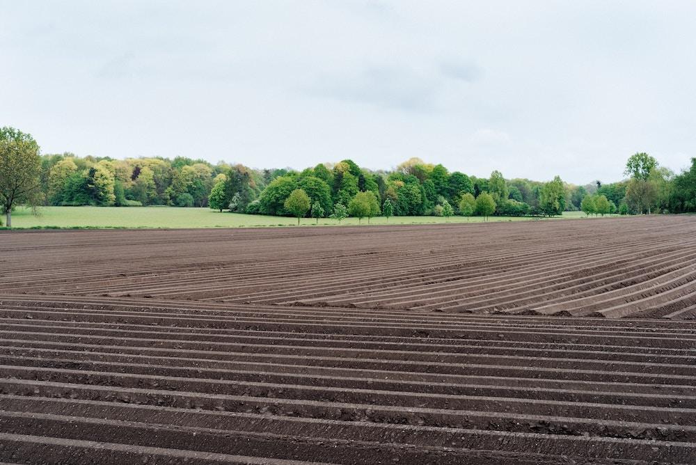 Wycena nieruchomości rolnych - standardy.