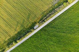 Dostęp do drogi publicznej - jak go zapewnić?