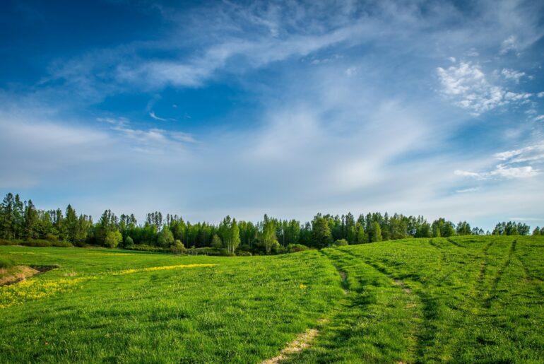 Flip na działce - jak zarabiać na nieruchomościach gruntowych?